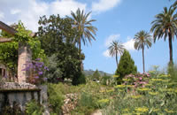 The botanical Garden