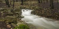 Dies de pluja: un recorregut per les Fonts Ufanes