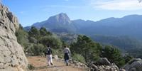 De Fornalutx a s'alzina fumadora i Puig de Sa Bassa