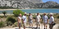 Dels paratges de Cúber, a la Font del Noguer