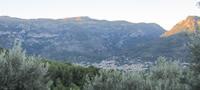 Excursió de sa Figuera a Fornalutx i Biniaraix, a trenc d´auba