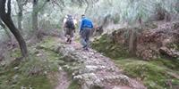 De la Vall d'Alcanella amb tornada per na Llonganissa
